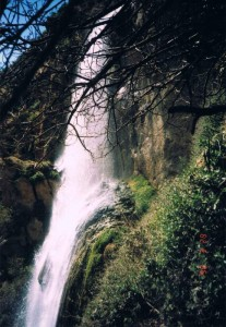 free things to do la water fall